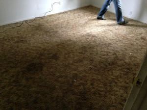 Another before pic of a bedroom and that carpet...