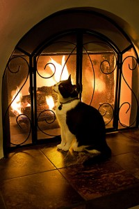 Warning: The kitty only bites if you don't clean your chimney buildup!  Image Credit: Cyrus Bulsara via Flickr