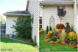 Insanely overgrown boxwood gets a fresh new makeover! BYE BYE BOXWOOD! *high five* Image: Shelley Smith