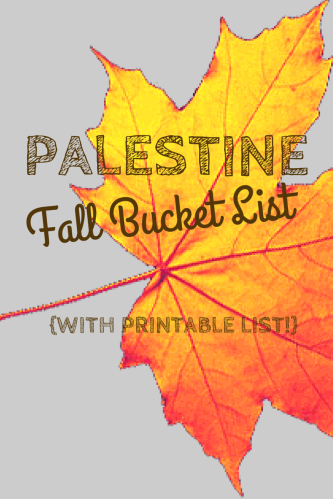 FALL 2014 PALESTINE, TX BUCKET LIST TO DO