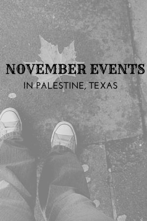 NOVEMBER'S STUFF TO DO in palestine tx