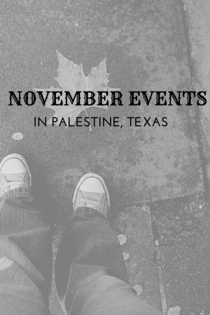 NOVEMBER'S STUFF TO DO in palestine tx