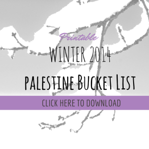 WINTER 2014 BUCKET LIST DOWNLOAD